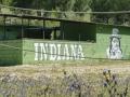 Indiana Parque (25)
